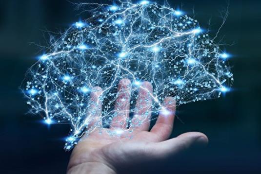 神经网络系统辨识的基本原理是什么