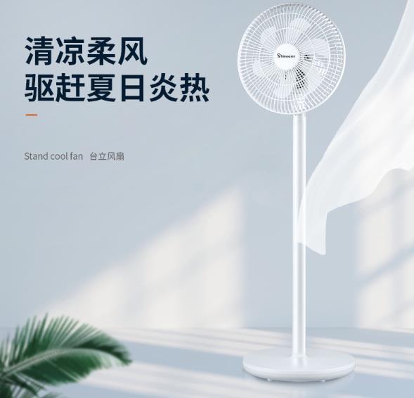 赛亿电风扇哪个型号好用性价比高